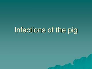 Infections of the pig
