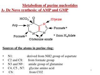 Metabolism of purine nucleotides A- De Novo synthesis: of AMP and GMP