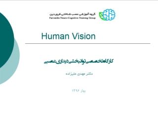 The Human Observer:  Visual Perception