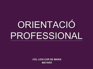 ORIENTACIÓ PROFESSIONAL