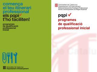 pqpi programes            de qualificació professional inicial