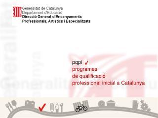 pqpi programes  de qualificació professional inicial a Catalunya