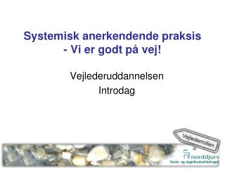 Systemisk anerkendende praksis - Vi er godt på vej!
