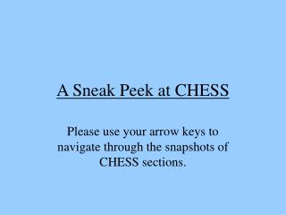 A Sneak Peek at CHESS