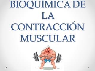 BIOQU�MICA DE LA CONTRACCI�N MUSCULAR