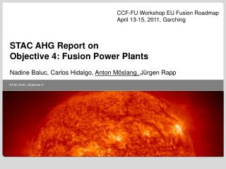 STAC AHG Report on Objective 4: Fusion Power Plants