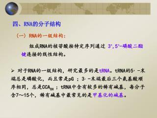 四、 RNA 的分子结构