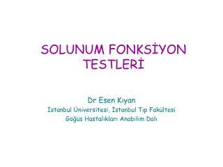 SOLUNUM FONKSİYON TESTLERİ