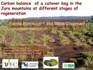 Carbon balance  of a cutover bog in the Jura mountains at different stages of regeneration