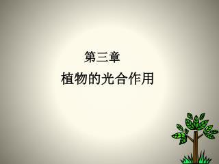 第三章 植物的光合作用