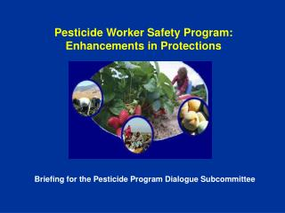 Pesticide Worker Safety Program:  Enhancements in Protections