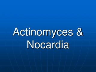 Actinomyces  Nocardia