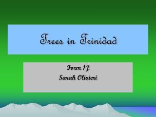 Trees in Trinidad