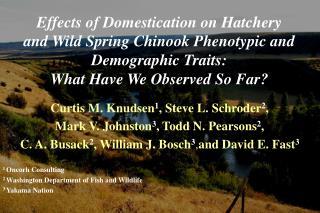 Curtis M. Knudsen 1 , Steve L. Schroder 2 ,  Mark V. Johnston 3 , Todd N. Pearsons 2 ,