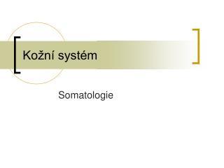 Kožní systém