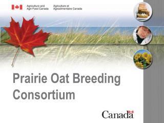 Prairie Oat Breeding Consortium
