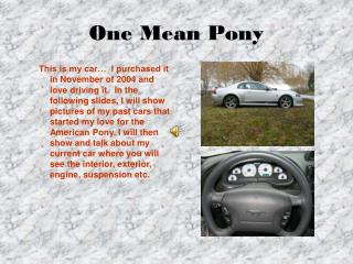 One Mean Pony