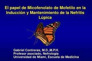 El papel de Micofenolato de Mofetilo en la Inducci ó n y Mantenimiento de la Nefritis L ú pica