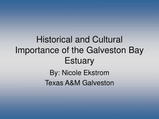 Historical and Cultural Importance of the Galveston Bay Estuary