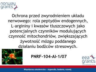 PNRF-104-AI-1/07