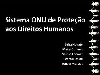 Sistema ONU de Proteção aos Direitos Humanos