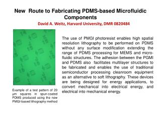 New  Route to Fabricating PDMS-based Microfluidic Components