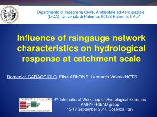 Influence of raingauge network characteristics on hydrological response at catchment scale