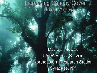Increasing Canopy Cover in Urban Areas