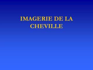 IMAGERIE DE LA CHEVILLE