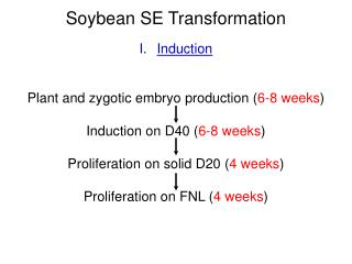 Soybean SE Transformation Induction Plant and zygotic embryo production ( 6-8 weeks )