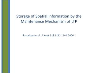 Storage of Spatial Information by the Maintenance Mechanism of LTP