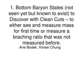 Arie Bodek, Yonsei Chung