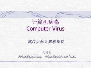 计算机病毒 Computer Virus