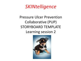 Pressure Ulcer Prevention (PUP) Collaborative Programme February 2014 – December 2014