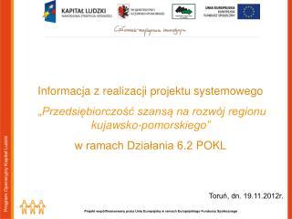 Informacja z realizacji projektu systemowego