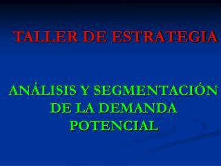 ANÁLISIS Y SEGMENTACIÓN  DE LA DEMANDA POTENCIAL