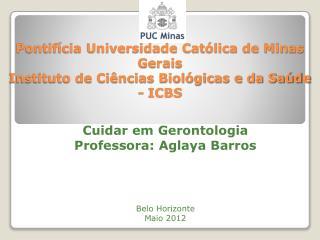 Cuidar em Gerontologia Professora:  Aglaya  Barros Belo Horizonte  Maio 2012