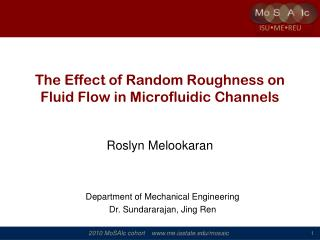 The Effect of Random Roughness on Fluid Flow in Microfluidic Channels
