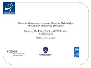 Capacity Development versus Capacity Substitution The Human Resources Dimension