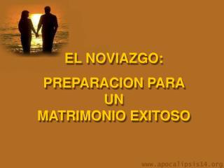 EL NOVIAZGO:  PREPARACION PARA UN MATRIMONIO EXITOSO