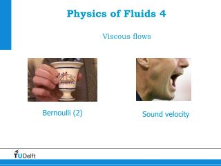 Physics of Fluids 4 Viscous flows