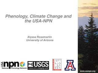 Alyssa Rosemartin University of Arizona