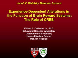 Jacob P. Waletzky Memorial Lecture Experience-Dependent Alterations in