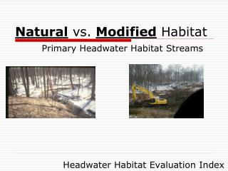 Natural  vs.  Modified  Habitat Primary Headwater Habitat Streams