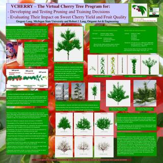 VCHERRY   The Virtual Cherry Tree Program for:   - Developing and Testing Pruning and Training Decisions   - Evaluating