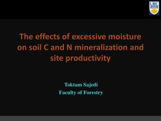 The effects of excessive moisture on soil C and N mineralization and site productivity