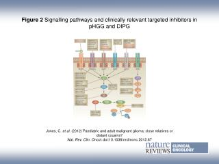 Figure 2 Signalling pathways and clinically relevant targeted inhibitors in pHGG and DIPG