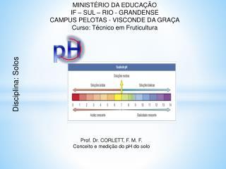 MINISTÉRIO DA EDUCAÇÃO IF – SUL – RIO - GRANDENSE CAMPUS PELOTAS - VISCONDE DA GRAÇA