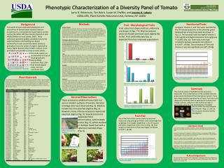 Phenotypic Characterization of a Diversity Panel of Tomato