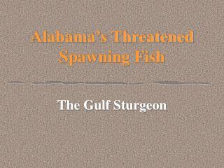 Alabama's Threatened Spawning Fish